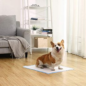tapis Uploria Pet World